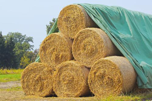 produit-agriculture